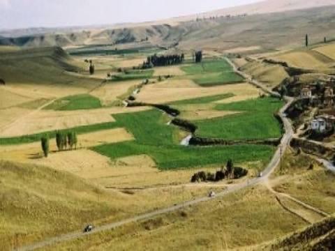İşlenmeyen tarım arazileri ne olacak?