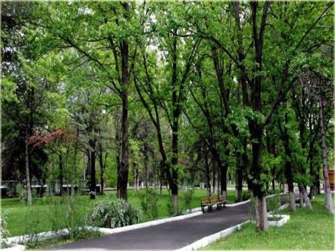 Atatürk Orman Çiftliği'nin otopark alanı 12 bin TL'ye kiralanacak!