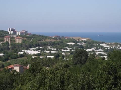 Sarıyer'deki tarım arazinin İSKİ'ye tahsisi mahkeme tarafından iptal edildi!