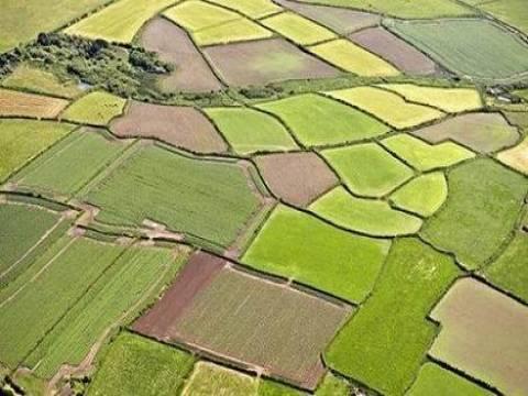 Toprak Koruma ve Arazi Kullanımı Kanunu'nda değişiklik yapıldı!
