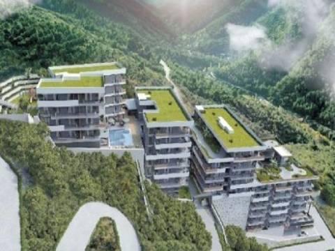 Bulut Orman Evleri 3 yılda tamamlanacak!