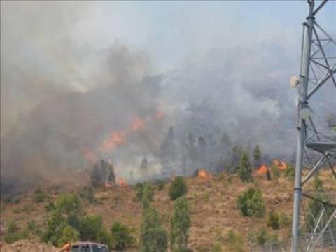 İzmir ve Manisa'da, yangın riski yüksek alanlar gözetim altında!