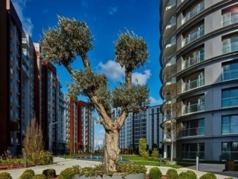 Tema İstanbul Atakent fiyat listesi 2017!