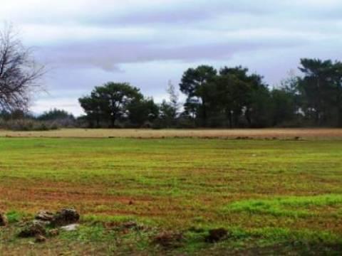 Uzun süre kullanılmayan araziler devlet tarafından kiraya verilecek!