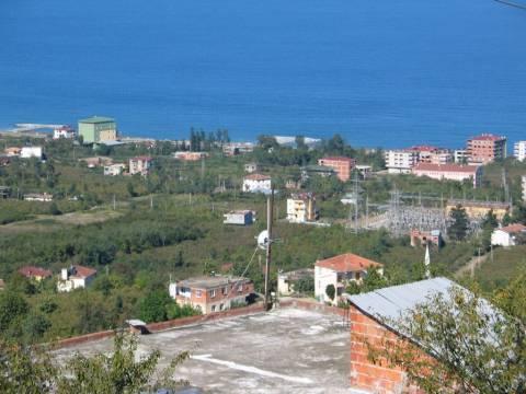 Trabzon Büyükşehir'den satılık arsa! 20 milyon TL'ye!