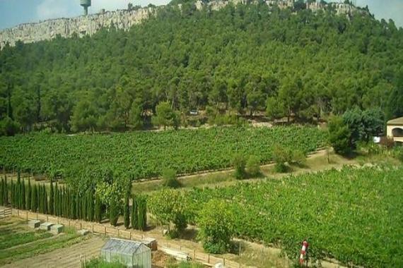 Atatürk Orman Çiftliği arazisi imara açıldı!