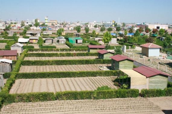 'Hobi bahçeleri' için yeni önlemler geliyor!
