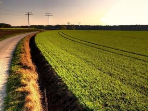 51 büyük ovaya tarımsal sit koruması!