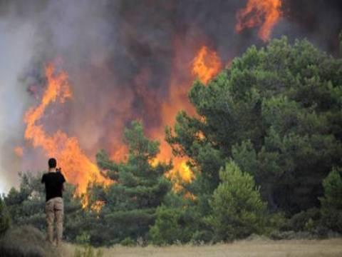 İzmir'de 20 hektarlık makilik alanda yangın çıktı!