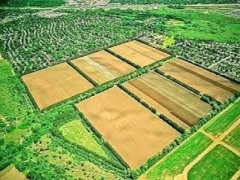Miras kalan tarım arazilerinin bölünmesi 2015!