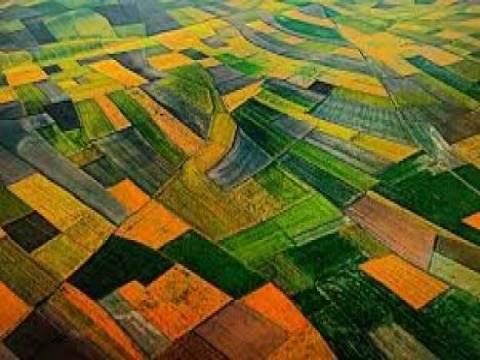 Tarımsal arazilerin harç muafiyet süresi uzatıldı mı?