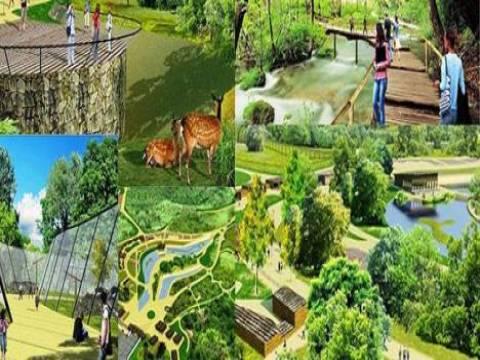 Kocaeli'de Türkiye'nin ve Avrupa'nın en büyük doğal yaşam parkı yapılıyor!