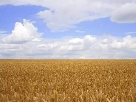 Miras kalan tarımsal arazilerin harç muafiyet süresinin uzatıldı mı?