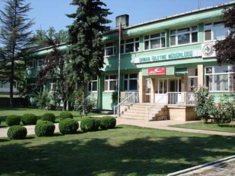 Ankara Orman Müdürlüğü inşaat ihalesi ertelendi!