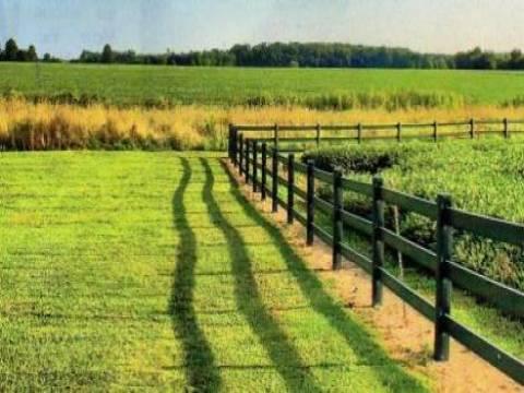 Türkiye Sudan'dan 99 yıllık tarım arazisi kiraladı!
